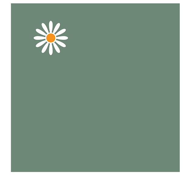 logo-margheriti-piante