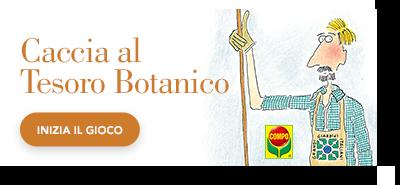 label_cacciaaltesorobotanico-parco-montepulciano