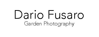 dario-fusaro-b